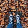 Argalis - Cold Feet Brown Leaves - 15:10:2018, 15.41