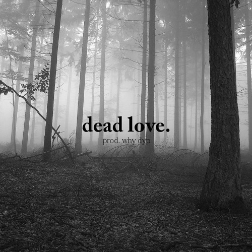 dead love. (prod. why dyp)