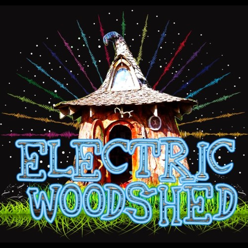 Electric Woodshed Demo 2018