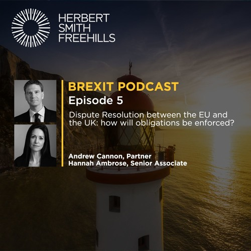 Brexit EP5: Dispute Resolution between the EU and the UK: how will obligations be enforced?