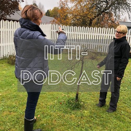 Iittiläiset puutarhat, paluu Perheniemeen – haastattelussa Salla Anttola – 19.10.2018
