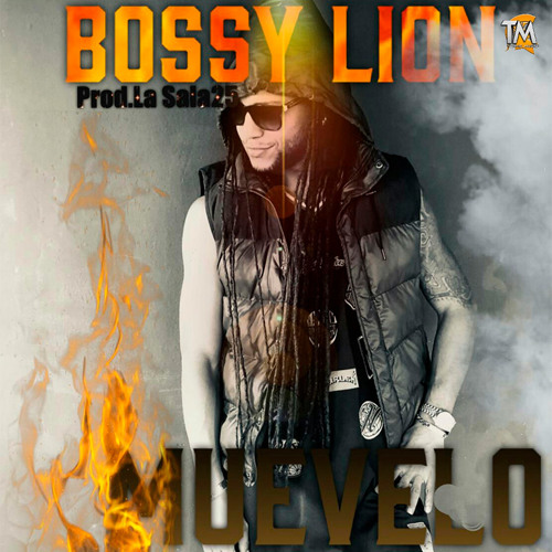 Bossy Lion - Muevelo