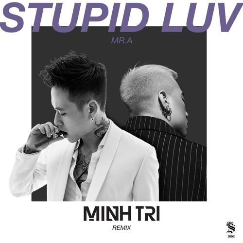 Stupid Luv - MR.A ft. DJ MINH TRI [Remix]
