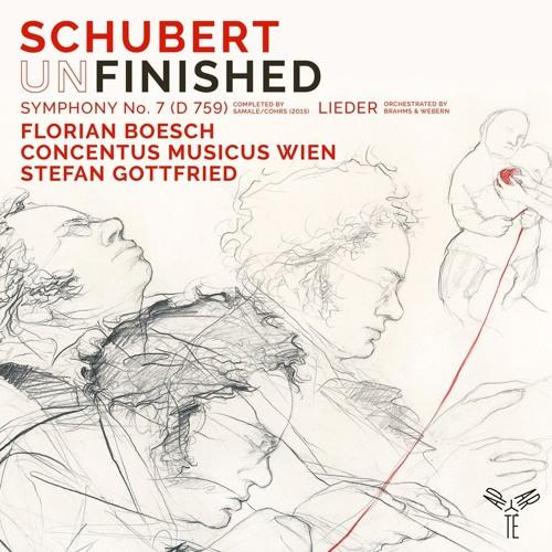 Schubert: Du Bist Die Ruh (D.776) | Florian Boesch, Concentus Musicus, Stefan Gottfried
