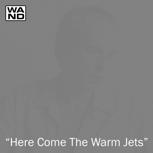 """Wand- """"Here Come The Warm Jets"""""""