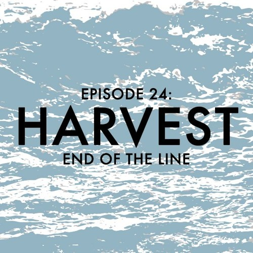 EPISODE 24: Harvest