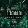 "AFROBBEAN VOL 2 ""Afro Meets Caribbean"" 2018 Mix"