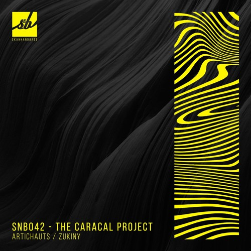 SNB042: The Caracal Project