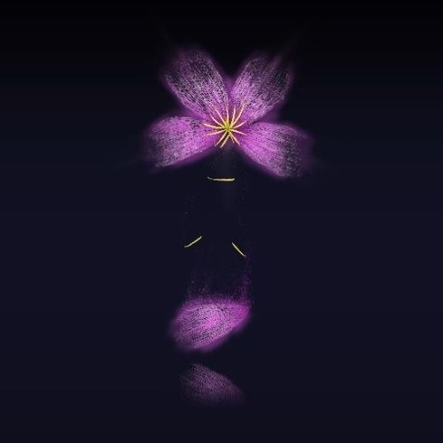 Sakura's Gravity