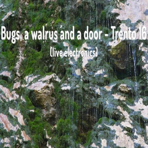 Bostjan Perovšek - Bugs, A Walrus And A Door - Trento 16 (live Electronics)