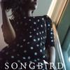 Joy Swaks- Song Bird