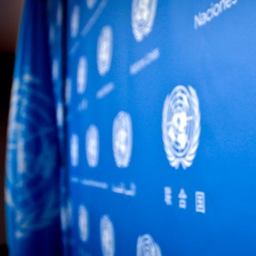 Bob Koigi: Will the real UN please stand up?