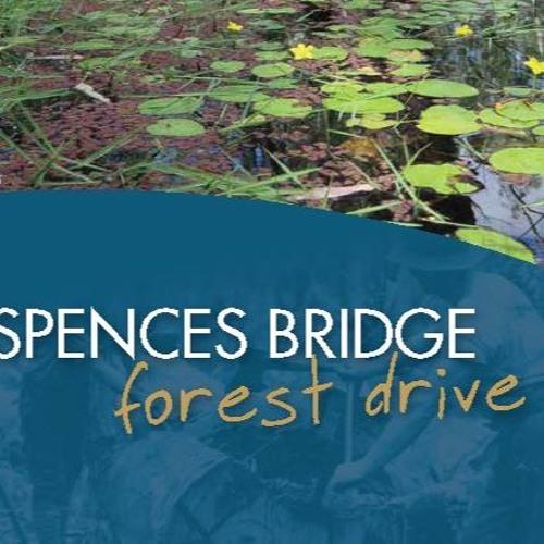 Spences Bridge Forest Drive