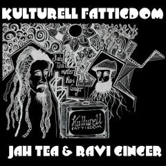 Kulturell Fattigdom feat. Ravi Ginger