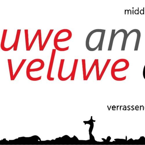 Anwb Automaatje Ermelo @ Veluwe AM // V-Totaal // 08-10-2018