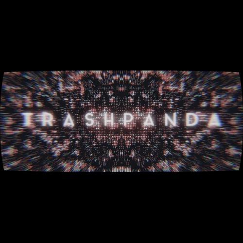 Hoffman and Noby - trashpanda (soundtrack)