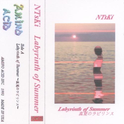 Labyrinth of Summer 〜真夏のラビリンス〜