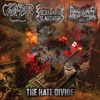 Sacrificial Slaughter - The Hate Divide