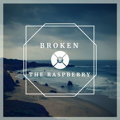 The Raspberry - Broken