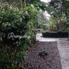 Hujan Malam
