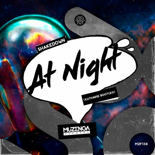 Shakedown - At Night (Katharse Bootleg)