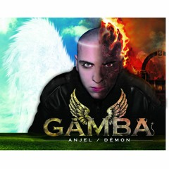 Gamba - Samičky