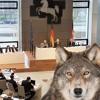 Best-of aus der Wolfsdebatte im Landtag