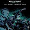 Sullivan King - Don't Go (not sorry & Wild Boyz! Remix)