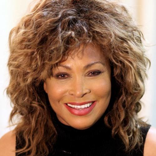 Tina Turner (The Best Hero)