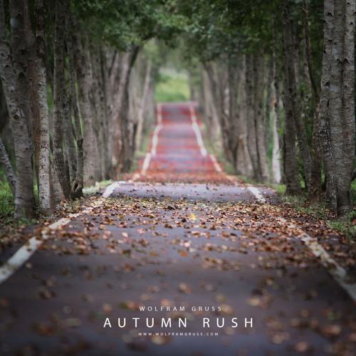 Autumn Rush (DJI WRC Wales 2018 Soundtrack)