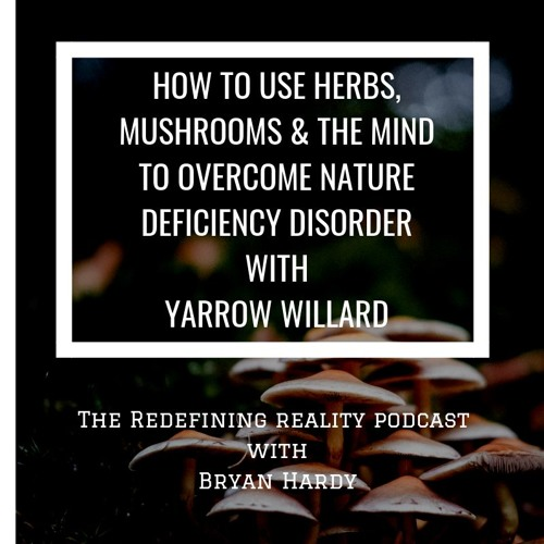 How To Use Herbs, Mushrooms, and the Mind - Yarrow Willard - Ep. 64