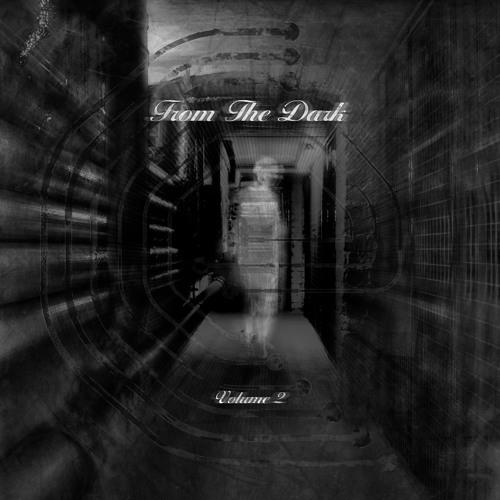 CE027 - From The Dark Volume 2
