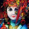 Lord Krishna Flute Music [ Tropical House Remix } RainForest Flute
