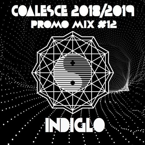 Coalesce 2018/2019 Promo Mix #12: Indiglo