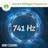 741 Hz Solfeggio Frequencies ☯ Mind Clearing ⬇FREE DL⬇
