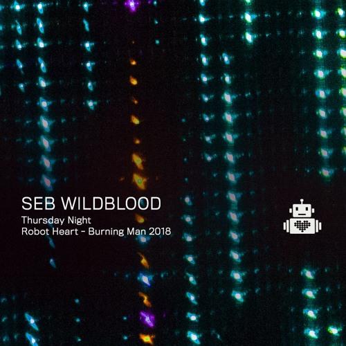 Seb Wildblood - Robot Heart - Burning Man 2018