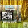 SWAMP FOX Vs. SWAMP THING - A TONY JOE WHITE Mixtape By RoBW