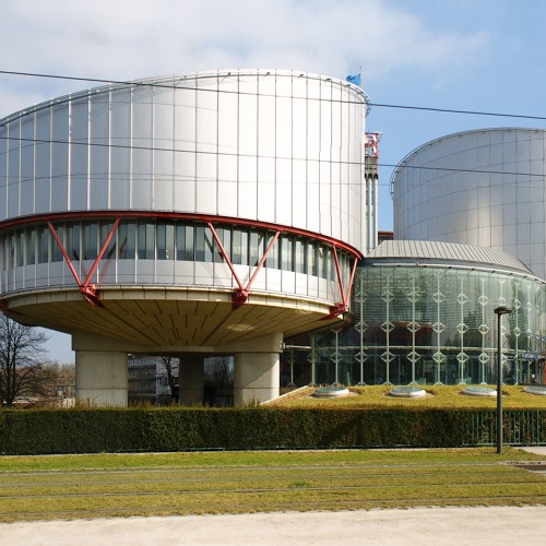 Swiss Up: The European Court of Human Rights