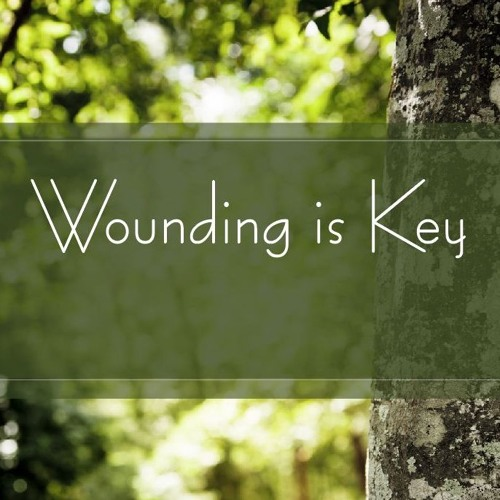 Wounding Is Key