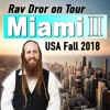 Miami 2  - The Purpose of Life's Ups and Downs - Rav Dror on Tour 2018 USA: