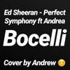 Ed Sheeran - Perfect Symphony (Cover)
