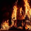 Coco Poco Loco - The Salute: Tribute to Dan B - Temple Burn Seed 2018