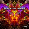 Spiritual Projection - LSD (Original Mix) [VA Elevating Souls by SY Records] OUT SOON!