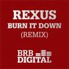 Burn it down (Remix)