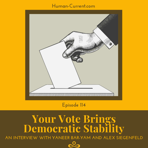 114 - Your Vote Brings Democratic Stability