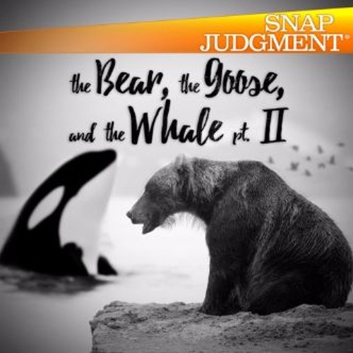 Benjamin And The Bear - Snap Judgment, The Bear, The Goose And The Whale (Part 2)