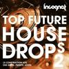 Incognet Top Future House Drops Vol.2 Samples [15 Kits + Presets, One Shots] +FREE DEMO SAMPLES