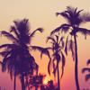 """GUATEMALA"" - Swae Lee, Slim Jxmmi, Rae Sremmurd Dancehall Type Beat [untagged]"