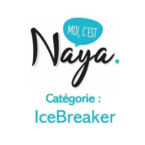 Introduction Icebreaker
