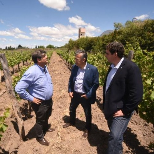 Inauguraron la primera bodega municipal de Mendoza en Junín